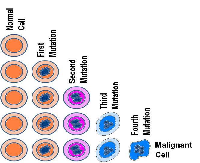 CancerCell-Dev1